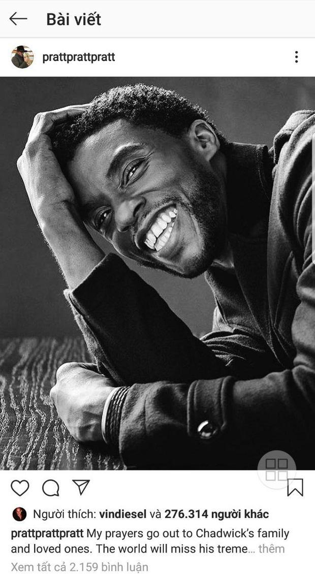 """Dàn sao Avengers, Ariana Grande và loạt nghệ sĩ Việt đau lòng trước sự ra đi của """"Black Panther"""" Chadwick Boseman - Ảnh 3."""