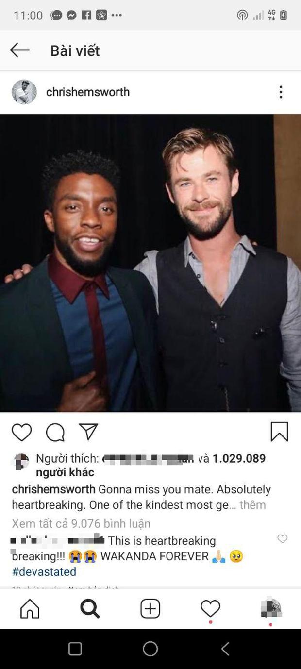 """Dàn sao Avengers, Ariana Grande và loạt nghệ sĩ Việt đau lòng trước sự ra đi của """"Black Panther"""" Chadwick Boseman - Ảnh 8."""