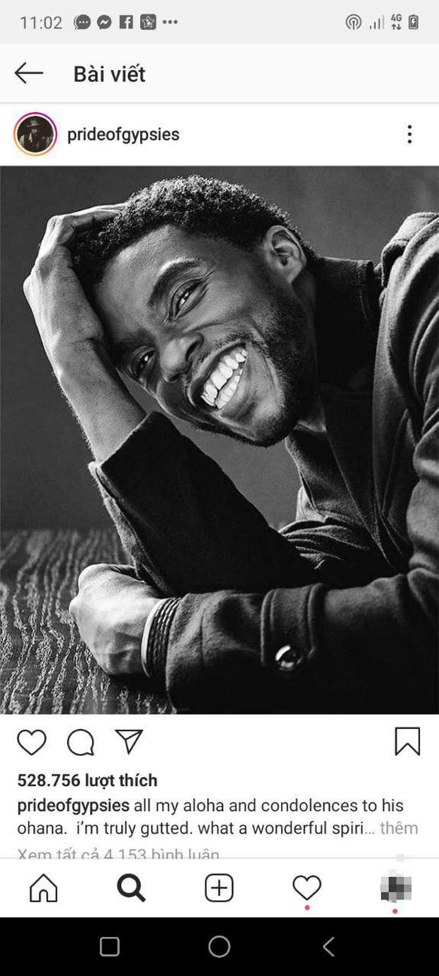 """Dàn sao Avengers, Ariana Grande và loạt nghệ sĩ Việt đau lòng trước sự ra đi của """"Black Panther"""" Chadwick Boseman - Ảnh 9."""