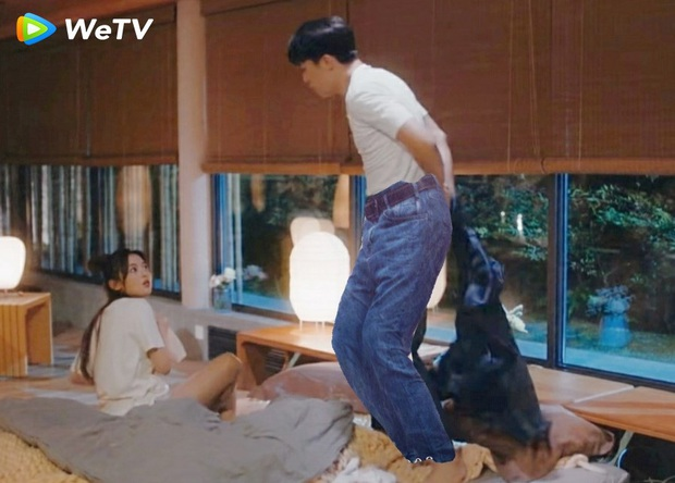 Lột đồ tranh giường với Dương Siêu Việt, Hứa Ngụy Châu chiếm spotlight cùng loạt ảnh chế siêu nhây - Ảnh 5.