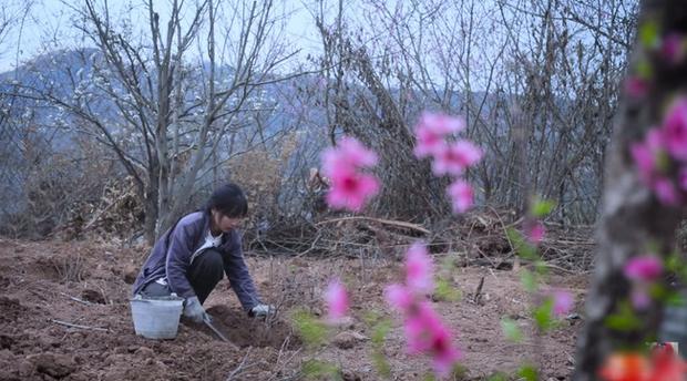 Tiên nữ đồng quê Lý Tử Thất mê hoặc hội chị em bằng vườn hồng như chốn cổ tích kèm công thức chế biến tỷ thứ từ loại hoa này - Ảnh 3.