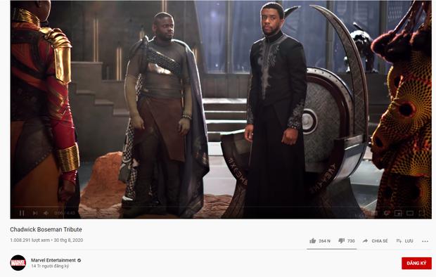 Đại gia đình Marvel đăng clip tưởng nhớ Báo Đen Chadwick Boseman: Anh xứng đáng đội vương miện như một vị vua đức hạnh - Ảnh 14.