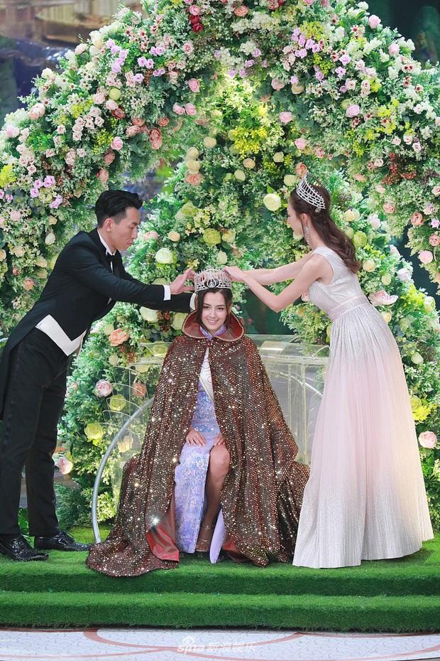 Tân Hoa hậu Hong Kong vừa đăng quang đã gây tranh cãi: Nhan sắc tựa Địch Lệ Nhiệt Ba nhưng chiều cao lại quá khiêm tốn - Ảnh 3.