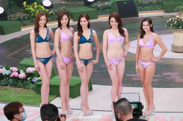 Tân Hoa hậu Hong Kong vừa đăng quang đã gây tranh cãi: Nhan sắc tựa Địch Lệ Nhiệt Ba nhưng chiều cao lại quá khiêm tốn - Ảnh 9.