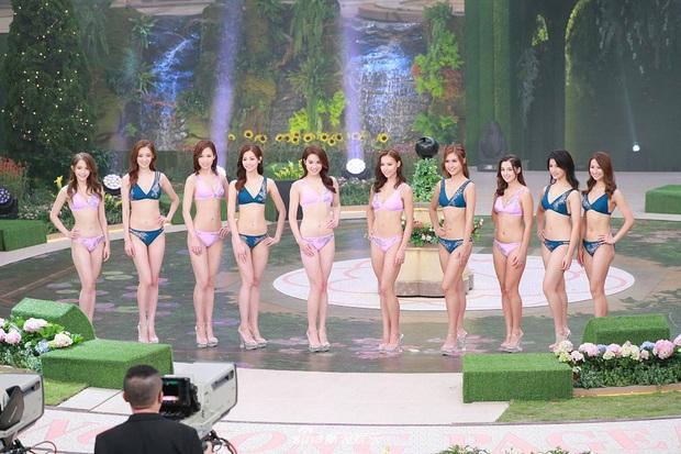 Tân Hoa hậu Hong Kong vừa đăng quang đã gây tranh cãi: Nhan sắc tựa Địch Lệ Nhiệt Ba nhưng chiều cao lại quá khiêm tốn - Ảnh 10.