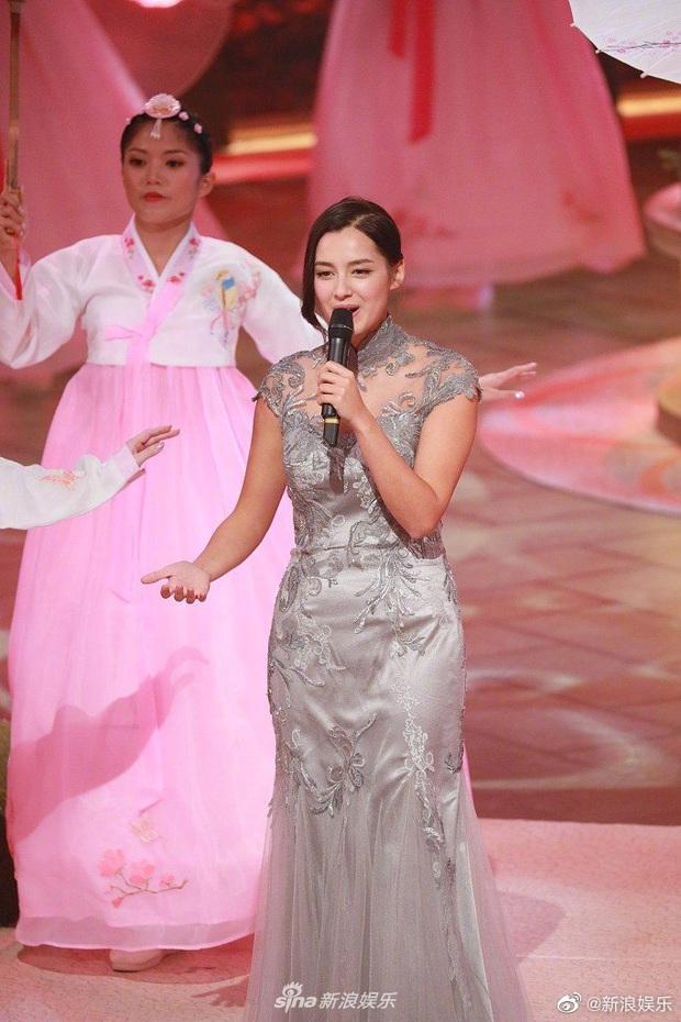 Tân Hoa hậu Hong Kong vừa đăng quang đã gây tranh cãi: Nhan sắc tựa Địch Lệ Nhiệt Ba nhưng chiều cao lại quá khiêm tốn - Ảnh 14.