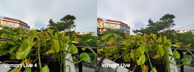 So sánh Vsmart Live 4 và Vsmart Live: Smartphone Make in Vietnam 100% có gì hơn? - Ảnh 12.