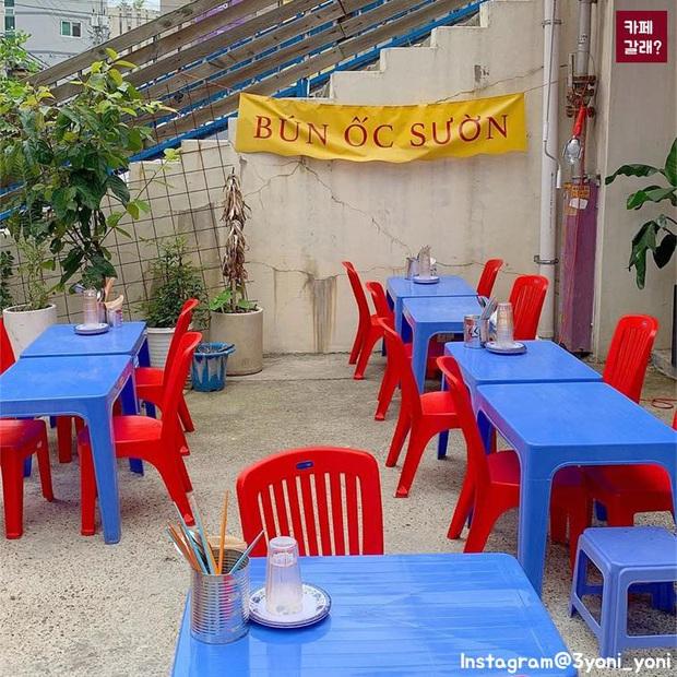 Một quán nhậu ở Seoul (Hàn Quốc) y hệt phố Tây Tạ Hiện từ A tới Z: Bàn ghế nhựa, đồ nhắm, kiểu gì cũng tưởng ở Việt Nam - Ảnh 8.