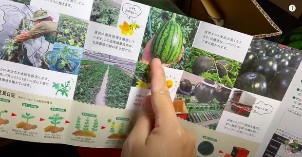 """Quỳnh Trần JP """"mạnh tay"""" mua thử trái dưa hấu đen đắt nhất thế giới về review, khẳng định hương vị không xứng với số tiền bỏ ra - Ảnh 4."""