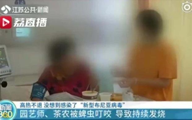 Trung Quốc: 7 người tử vong do nhiễm virus Bunya chủng mới - Ảnh 1.