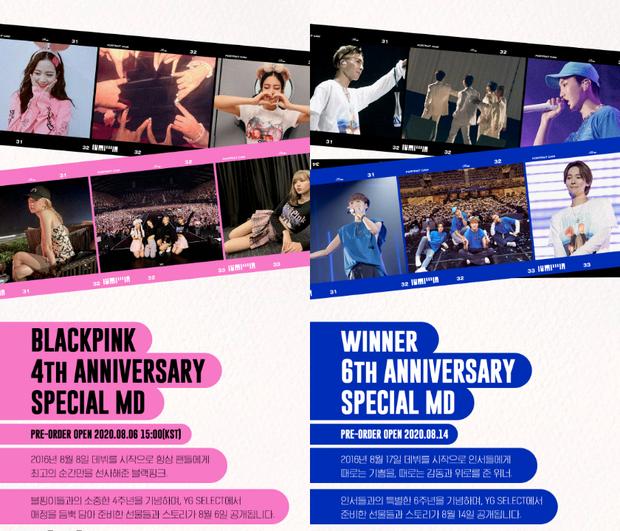 YG lại ghi sai ngày debut biến WINNER thành hậu bối của BLACKPINK, fan tức giận: Tìm mù mắt cũng không ra điểm tốt đẹp gì của công ty - Ảnh 3.
