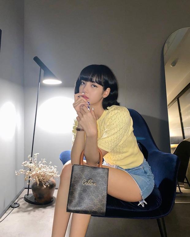 """Giữa ồn ào sao Hàn """"ăn gạch"""" vì chiêu trò quảng cáo, Lisa (BLACKPINK) chứng tỏ EQ cao ngất chỉ với vài bức ảnh sống ảo - Ảnh 4."""