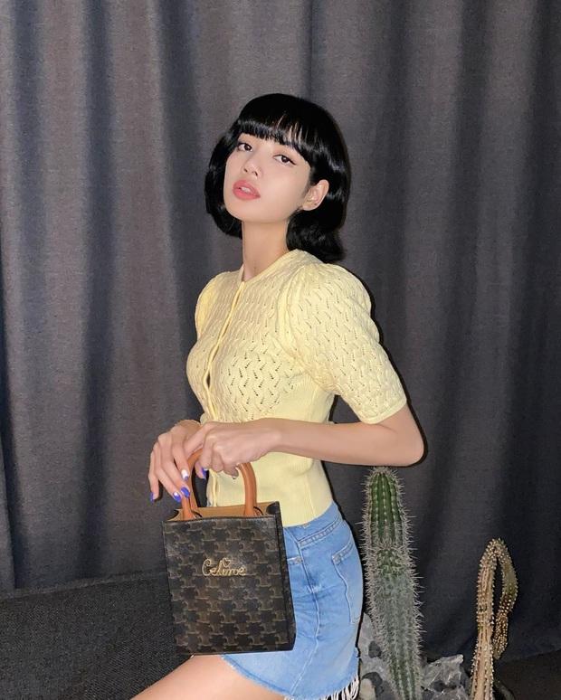 """Giữa ồn ào sao Hàn """"ăn gạch"""" vì chiêu trò quảng cáo, Lisa (BLACKPINK) chứng tỏ EQ cao ngất chỉ với vài bức ảnh sống ảo - Ảnh 3."""