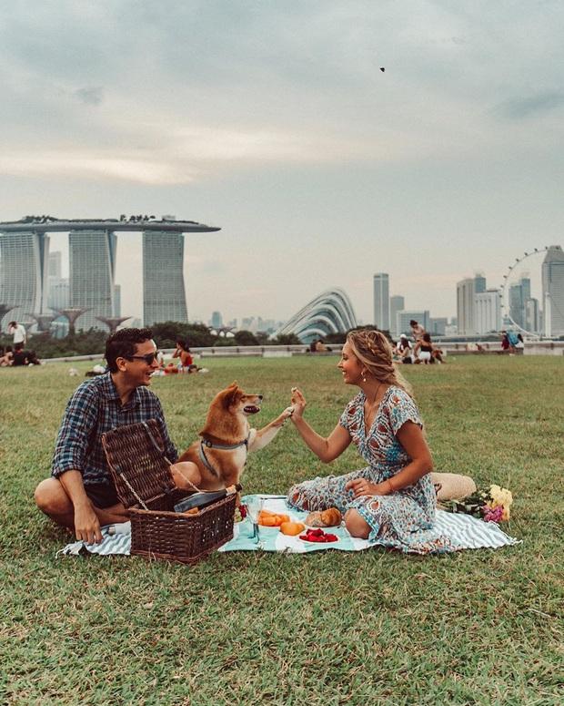 Singapore học tập Việt Nam và Nhật Bản kích cầu du lịch nội địa bằng chiến dịch trị giá hơn 700 tỷ đồng - Ảnh 5.