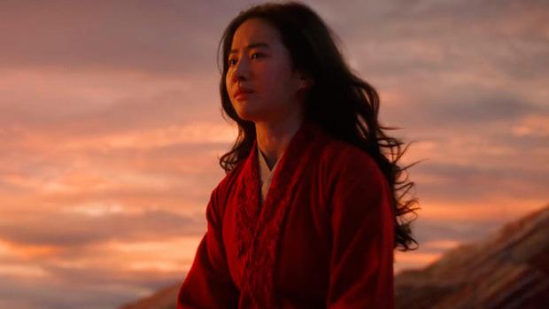 Đập phá poster khi Mulan công bố không chiếu rạp, ông chủ rạp Pháp khiến bà con sôi máu - Ảnh 6.