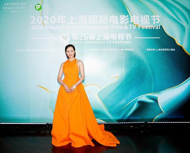 Thảm đỏ Bạch Ngọc Lan: Lưu Đào chặt chém bên Hoa hậu Hoàn vũ, Tôn Lệ đọ sắc bên dàn chị đẹp quyền lực Cbiz - Ảnh 12.