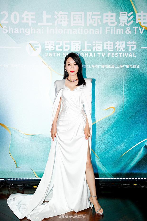 Thảm đỏ Bạch Ngọc Lan: Lưu Đào chặt chém bên Hoa hậu Hoàn vũ, Tôn Lệ đọ sắc bên dàn chị đẹp quyền lực Cbiz - Ảnh 13.