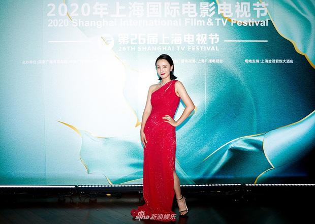 Thảm đỏ Bạch Ngọc Lan: Lưu Đào chặt chém bên Hoa hậu Hoàn vũ, Tôn Lệ đọ sắc bên dàn chị đẹp quyền lực Cbiz - Ảnh 14.