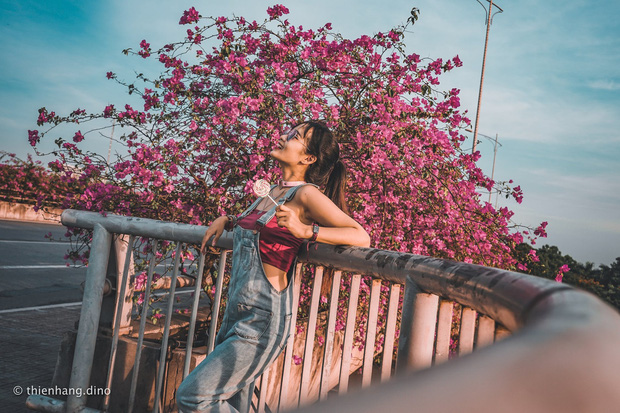 Gần Hà Nội lại có thêm một cây cầu hoa giấy, chụp lên ảnh đẹp như tranh vẽ - Ảnh 3.