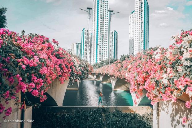 Gần Hà Nội lại có thêm một cây cầu hoa giấy, chụp lên ảnh đẹp như tranh vẽ - Ảnh 2.