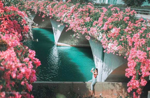 Gần Hà Nội lại có thêm một cây cầu hoa giấy, chụp lên ảnh đẹp như tranh vẽ - Ảnh 1.