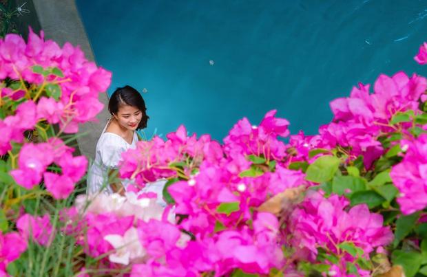 Gần Hà Nội lại có thêm một cây cầu hoa giấy, chụp lên ảnh đẹp như tranh vẽ - Ảnh 6.