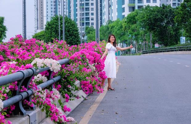 Gần Hà Nội lại có thêm một cây cầu hoa giấy, chụp lên ảnh đẹp như tranh vẽ - Ảnh 7.