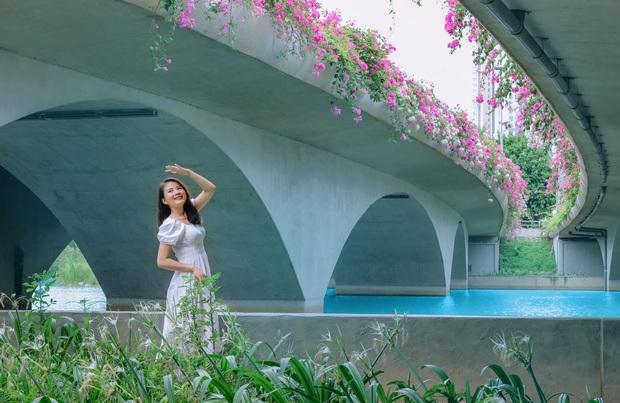 Gần Hà Nội lại có thêm một cây cầu hoa giấy, chụp lên ảnh đẹp như tranh vẽ - Ảnh 8.