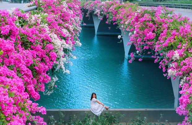 Gần Hà Nội lại có thêm một cây cầu hoa giấy, chụp lên ảnh đẹp như tranh vẽ - Ảnh 9.