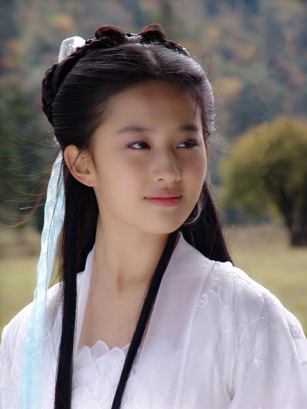 4 nữ thần sở hữu nhan sắc tự nhiên nhất Cbiz: Triệu Lệ Dĩnh gây tranh cãi, Lưu Diệc Phi vẫn thua mỹ nhân Tân Cương - Ảnh 9.