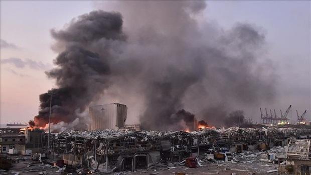 CEO Tim Cook thông báo Apple sẽ ủng hộ Beirut sau vụ nổ thảm khốc, số tiền không được tiết lộ - Ảnh 1.