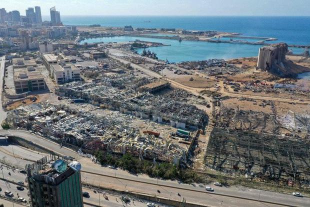 CEO Tim Cook thông báo Apple sẽ ủng hộ Beirut sau vụ nổ thảm khốc, số tiền không được tiết lộ - Ảnh 3.