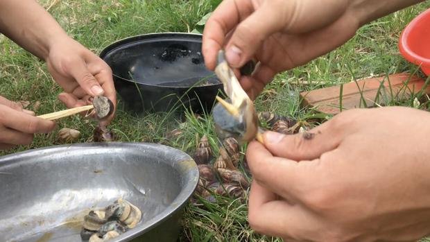 Dân tình xúm lại hỏi xem món đặc sản cực lạ ở Sơn La làm từ con gì: Đây là ốc hay rắn xào lăn vậy? - Ảnh 5.