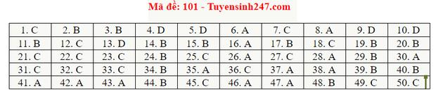 Đáp án đề thi tốt nghiệp THPT Quốc gia 2020 môn Toán (tất cả mã đề) - Ảnh 2.