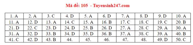 Đáp án đề thi tốt nghiệp THPT Quốc gia 2020 môn Toán (tất cả mã đề) - Ảnh 5.