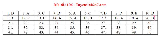 Đáp án đề thi tốt nghiệp THPT Quốc gia 2020 môn Toán (tất cả mã đề) - Ảnh 6.