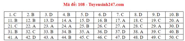 Đáp án đề thi tốt nghiệp THPT Quốc gia 2020 môn Toán (tất cả mã đề) - Ảnh 7.