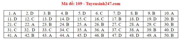 Đáp án đề thi tốt nghiệp THPT Quốc gia 2020 môn Toán (tất cả mã đề) - Ảnh 8.