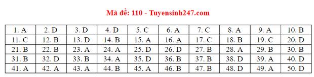 Đáp án đề thi tốt nghiệp THPT Quốc gia 2020 môn Toán (tất cả mã đề) - Ảnh 9.