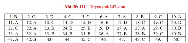 Đáp án đề thi tốt nghiệp THPT Quốc gia 2020 môn Toán (tất cả mã đề) - Ảnh 10.
