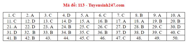 Đáp án đề thi tốt nghiệp THPT Quốc gia 2020 môn Toán (tất cả mã đề) - Ảnh 11.
