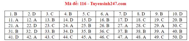 Đáp án đề thi tốt nghiệp THPT Quốc gia 2020 môn Toán (tất cả mã đề) - Ảnh 12.