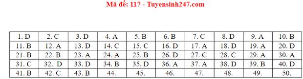 Đáp án đề thi tốt nghiệp THPT Quốc gia 2020 môn Toán (tất cả mã đề) - Ảnh 13.