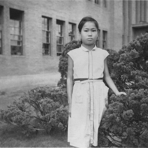 1.000 con hạc giấy và điều ước nhỏ mãi không thành hiện thực của bé gái 12 tuổi mắc bệnh bom nguyên tử Hiroshima đã làm thay đổi cả thế giới - Ảnh 2.