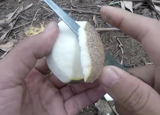 Trái cám - loại quả rất lạ chỉ ai ở miền Tây mới biết, ăn được không vẫn còn là ẩn số với nhiều người! - Ảnh 5.