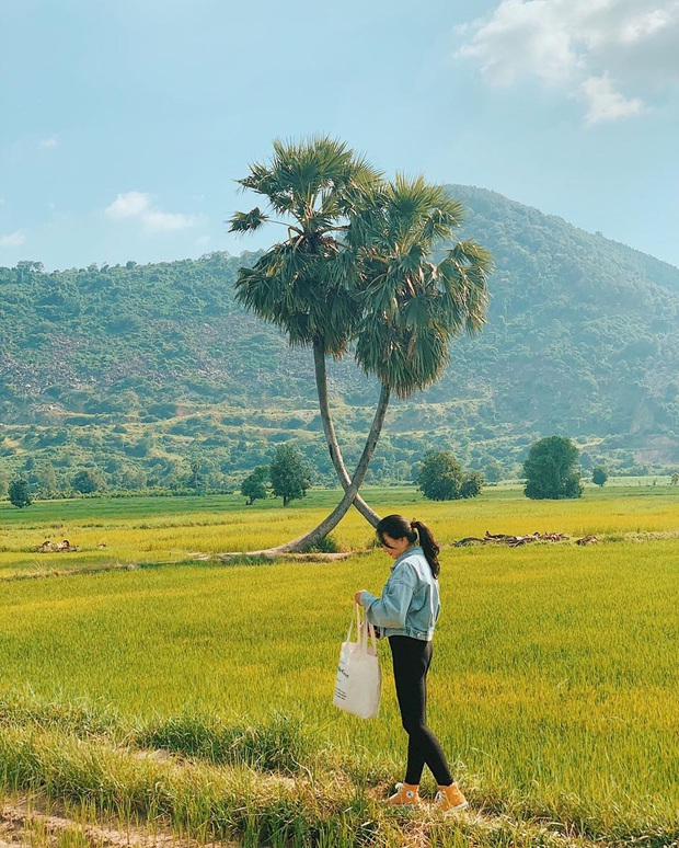 """Điểm du lịch được """"săn đón"""" nhất ở miền Nam hiện tại: Chi phí rẻ lại nằm gần xịt Sài Gòn, giới trẻ check-in ngập tràn MXH - Ảnh 23."""