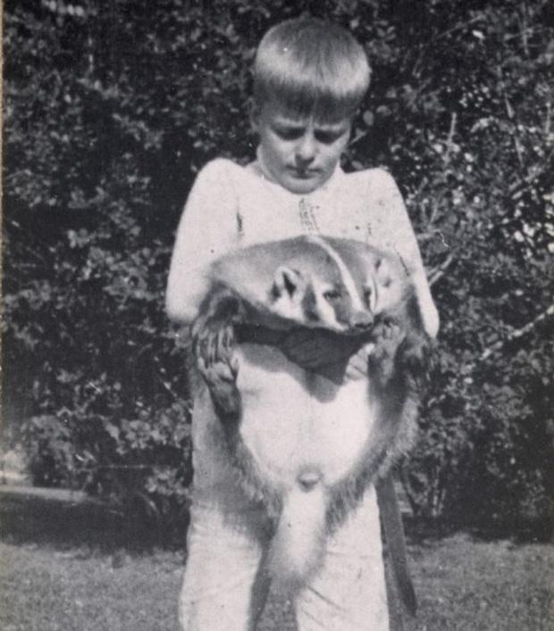 Đứa trẻ ôm ấp bé cá sấu mà mặt thản nhiên như không có gì và hàng loạt thể loại thú cưng không phải ai cũng dám nuôi - Ảnh 8.