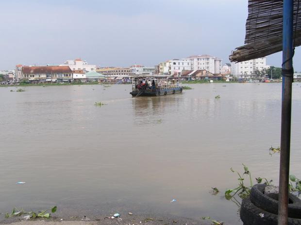 TP.HCM: Cảnh báo cá sấu xuất hiện trên sông Sài Gòn - Ảnh 1.