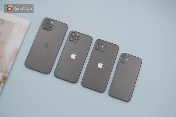 Xuất hiện iPhone 12 mô hình tại Việt Nam, thiết kế giống hệt thông tin rò rỉ - Ảnh 1.