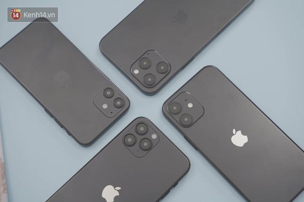 Xuất hiện iPhone 12 mô hình tại Việt Nam, thiết kế giống hệt thông tin rò rỉ - Ảnh 3.